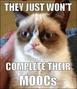 MOOC cat