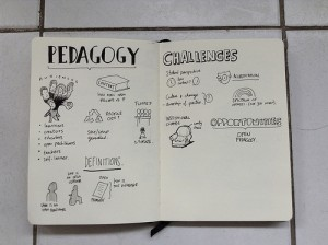 open pedagogy